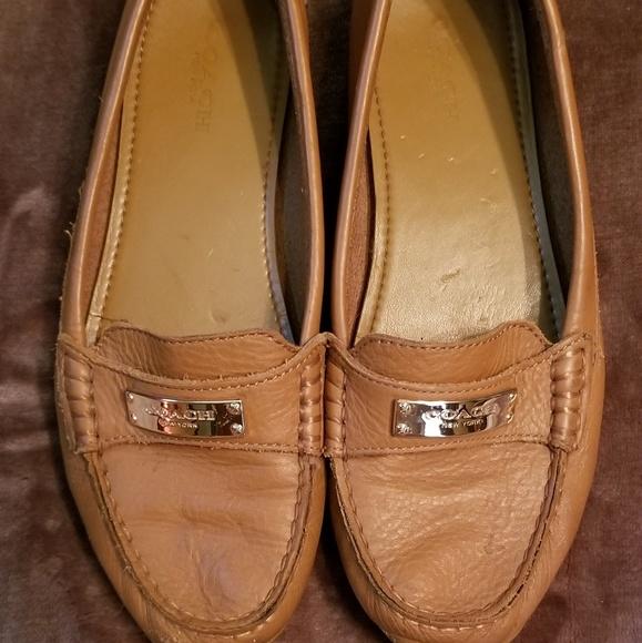 Coach Shoes   Coach Fredrica Leather